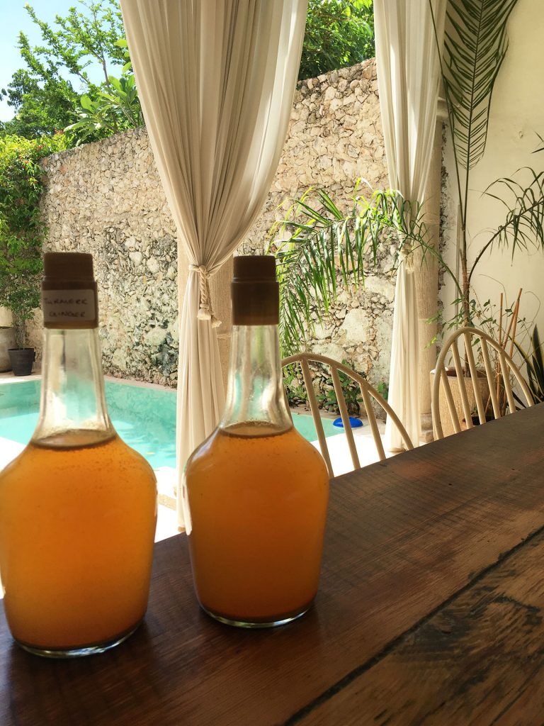 Kombucha Magic – Anywhere
